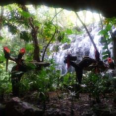 Cozumel, Mexico - Xenses