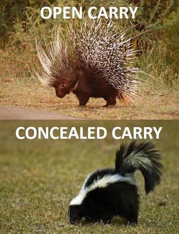 conceal carry.jpg