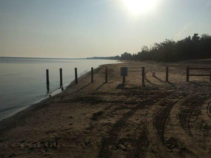 beach1_n.jpg