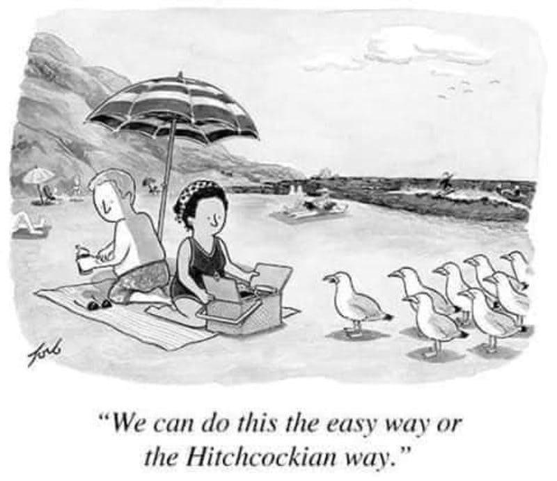 seagulls and hitchcock.jpg