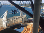 Symphony of the Seas Professional Photo