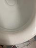 Disgusting toilet seat