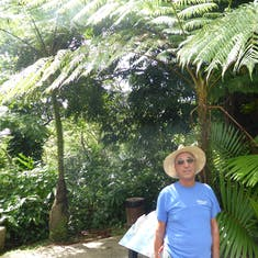 Milt in the Rain Forest