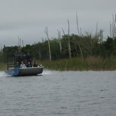 Airboat on the fly--We took Everglade airboat excursion