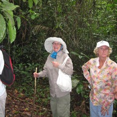 We took a jungle hike, at the 1000 mile up river point on the Amazon