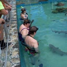Charlotte Amalie, St. Thomas - My sister and I swimming with sharks at Coral World.
