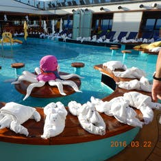 Lido has been invaded by towel animals.