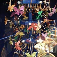 Butterflies Lounge.