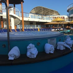 towel animal zoo