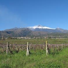 Catania, Sicily - Snow capped Mt Etna, Sicily, one wine tour