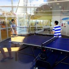 Ping Pong - Table Tennis