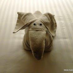 Elephant - Towel Animal