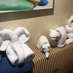 Our favorite towel animals. Out of 15