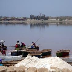 Dakar, Senegal - Pink Lake of Retba - harvesting salt from the river