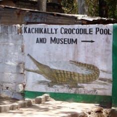 Dakar, Senegal - Kachikally Croccodile Pool & Museum