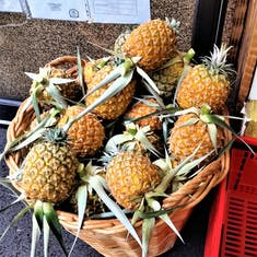 Wow, they grow pineapples here!!!