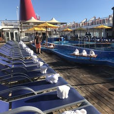 Towel animals on all the deck chairs