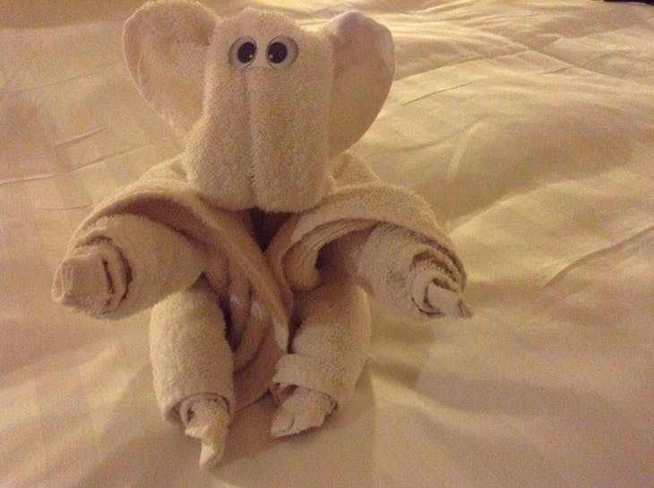Towel art. - Veendam