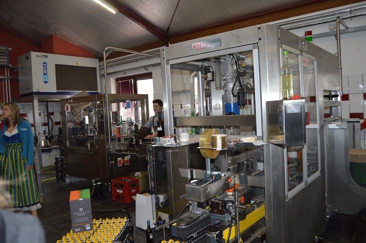 Morwald Winery Bottling Line - Viking Jarl