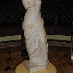 Venus on board
