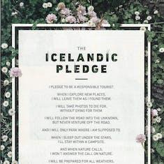 Reykjavik, Iceland - Pledge