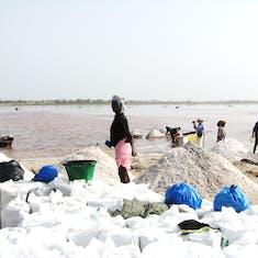 Dakar, Senegal - Senegal, The Pink Lake--Harvesting salt commerically