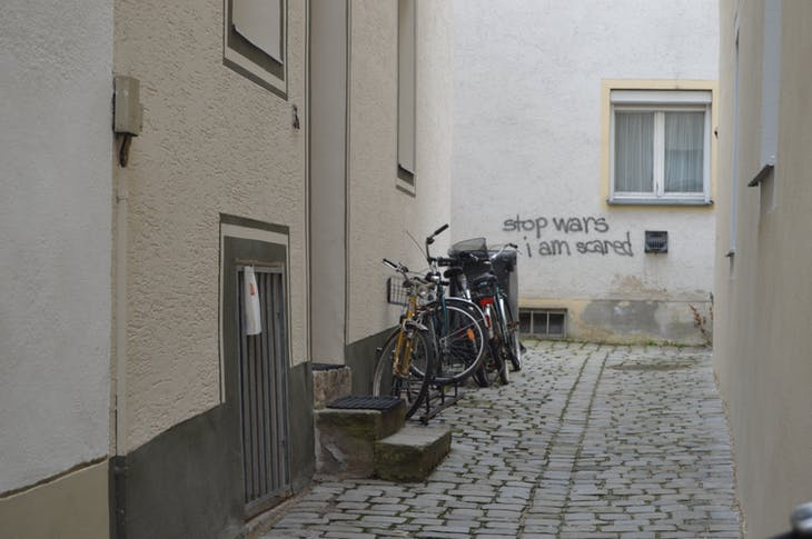 Passau - Grafiti - Viking Jarl