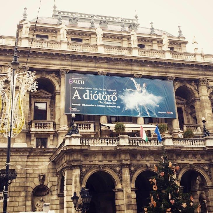 Budapest Opera House - Viking Jarl