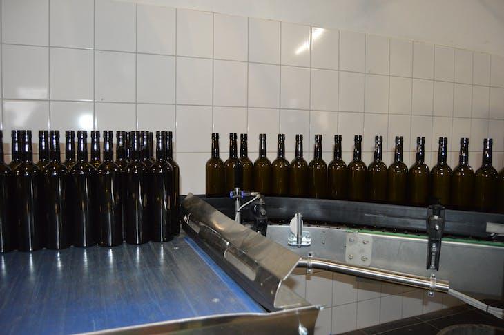 Durnstein, Austria - Morewald Winery Bottling Line - Viking Jarl