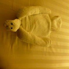Turtle Towel Animal
