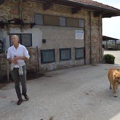 Sorrento, Italy - Dairy Farm Tour