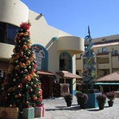 Cabo Holiday